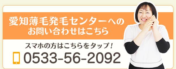 電話番号:0533756099